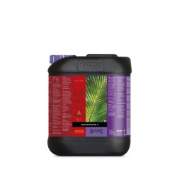 B'CUZZ COCO NUTRITION A 5 L