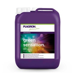 GREEN SENSATION 5 L PLAGRON