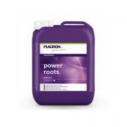 POWER ROOTS 5 L