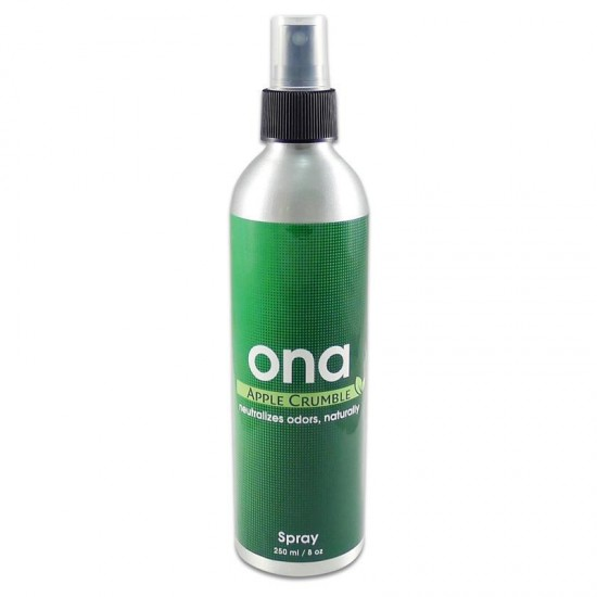 ONA SPRAY 250 ML APPLE CRUMBLE